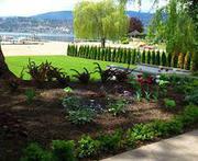 landscape Service in Portland